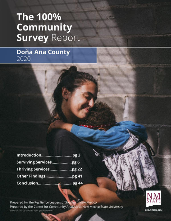 Initiative teams are analyzing survey results to identify where barriers to vital services exist and why. Review the Doña Ana County Survey Report.