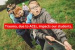 Our students endure ACEs and trauma