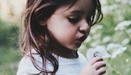 little-girl-dandelion1800